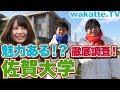 【遊記】九州大歩走〔第七回:福岡/佐賀〕冷泉莊手作市集/鳥栖Outlet/博多屋台|Go Go Go Travel - 日本 Vlog