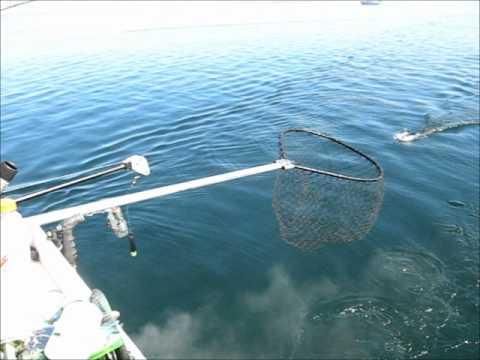Duluth Minnesota Fishing Charters