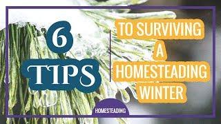 6 tips For Surviving A Homesteading Winter - Homestead Farming