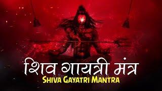 SHIV GAYATRI MANTRA 108 TIMES - OM TATPURUSHAYA VIDMAHE - MAHASHIVRATRI SPECIAL SONG