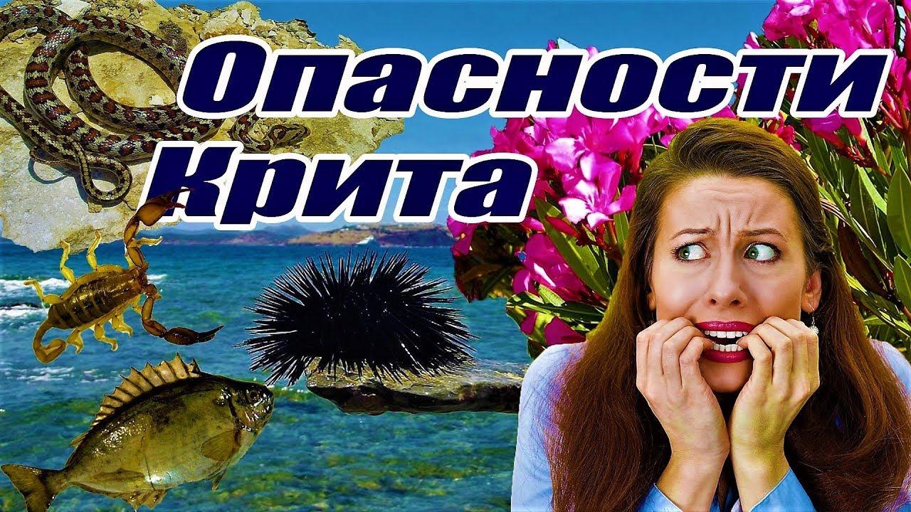 Греция остров КРИТ Ядовитые растения и опасные животные ...