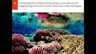 25 Crazy Facts About Planet Earth That Will Blow Your Mind