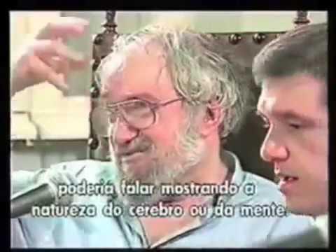 Um Encontro Inesquecível entre Paulo Freire e Seymour Papert