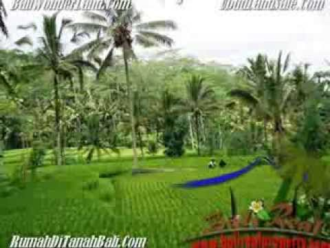 Magnificent 2,000 m2 LAND FOR SALE IN Ubud Tegalalang BALI TJUB490