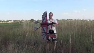 Pterodactyl Ornithopter - первый полет