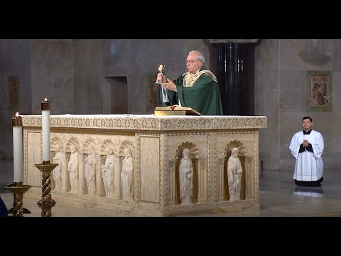 Catholic Mass Today | Daily TV Mass, Tuesday June 16 2020 from YouTube · Duration:  29 minutes 10 seconds
