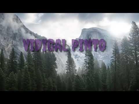 Vidigal Pinto-Fahe Malu Ona