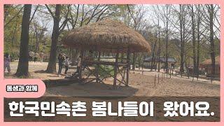 한국민속촌 구경왔어요.~~