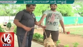 Dog Hostels | Dog Daycare Centers In Hyderabad | Happy Dogs Kennel | V6 News