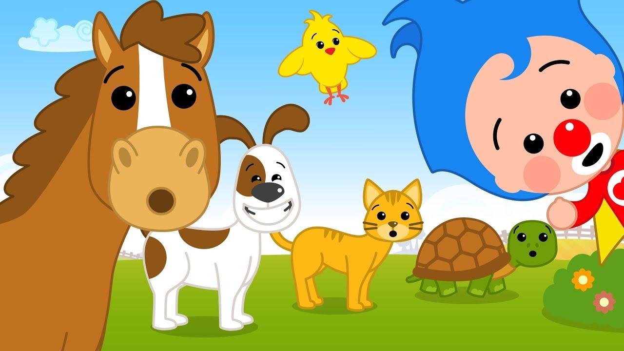 ¡Como Los Animalitos y Más Canciones de Plim Plim! | El Reino Infantil