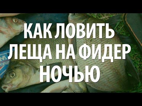 Видео ловля леща ночью летом