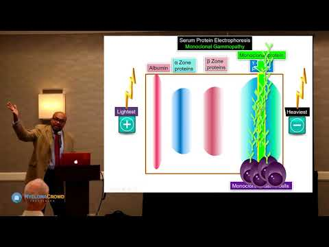 MCRT Detroit 2017: Dr. Craig Cole on Understanding Your Type of Myeloma