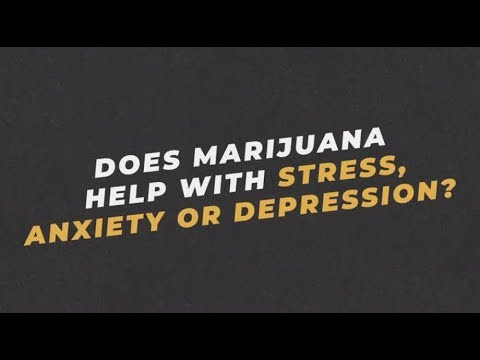Ask an Expert: Dr. Jasmin Zavala on Whether Marijuana Helps Stress, Anxiety or Depression   You Can