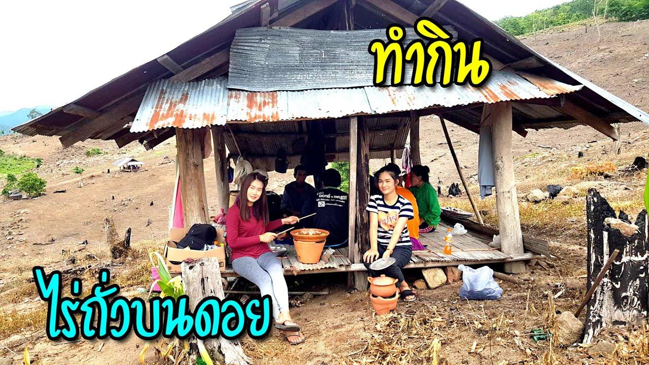ติดฝนกับชนเผ่า #14 มื้ออร่อยจัดหมูกะทะเตาดินเลี้ยงพี่น้องชาวไตร่วมด้วยช่วยกันปลูกถั่วเหลืองยอดดอยสูง