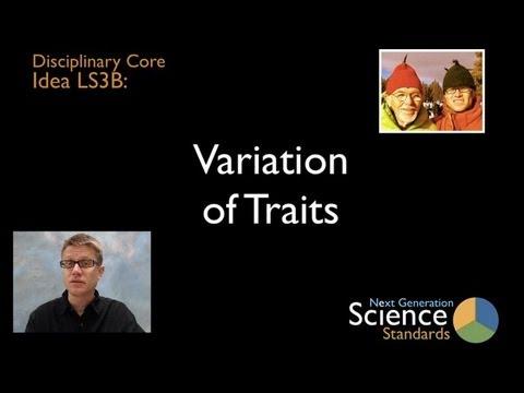 LS3B - Variation of Traits