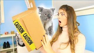 Repeat youtube video Weirdest Swap EVER With BeautyLiciousInsider!