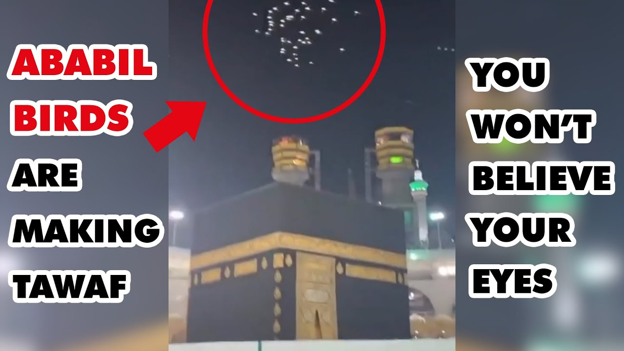 Ababil Birds Are Making Tawaf Around Qaba (Kabaa)!