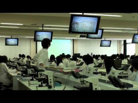 平成23年度福井大学生命複合科学...