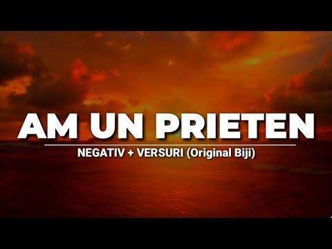 Download Negativ - AM UN PRIETEN (Original Biji)