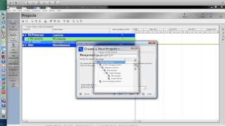 Lesson 1 Creating a Project Plan in Primavera P6 (Project Management)