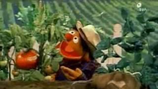 Bert en Ernie - Groente is groen, paars, geel of rood
