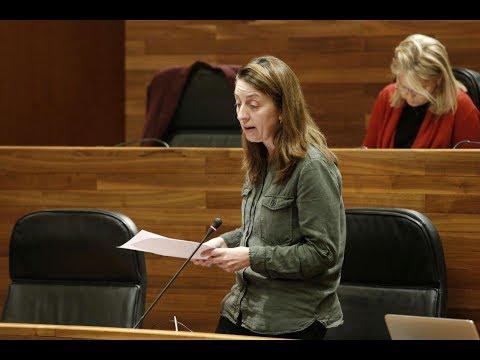 No vamos a ser quienes digamos en este parlamento que la música de sus presupuestos suena bien