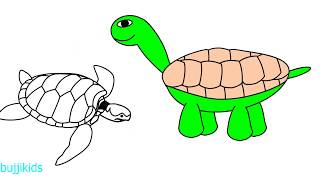 How to Draw Tortoise for Kids | Easy Turtle Drawing | Drawing Ideas