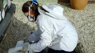 The Ladykillers: Pest Detectives - Trailer - BBC Two