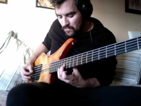 bass solo vigier passion