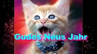 Смешные коты поздравляют  с новым годом
