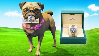 Dog Robs $100 Bill & Rolex From The Bank Vault.. (GTA RP)