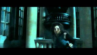 Harry Potter and the Deathly Hallows part 1 - Bellatrix's reign of terror at Malfoy Manor (part 1) Thumb