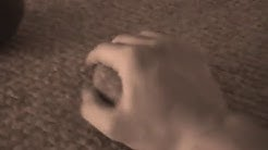 5 Easy Methods of Training The Iron Palm