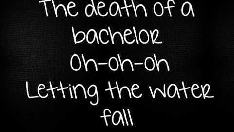 panic at the discodeath of a bachelor lyrics