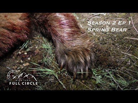 Montana Full Circle S:2 E:1 Montana Blonde Spring Bear Hunt