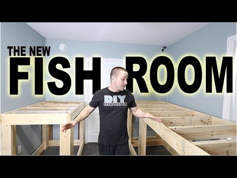 STARTING the new FISH ROOM
