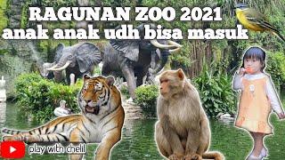 Ragunan Zoo Jakarta   Anak Anak Udah Bisa Masuk Loh !