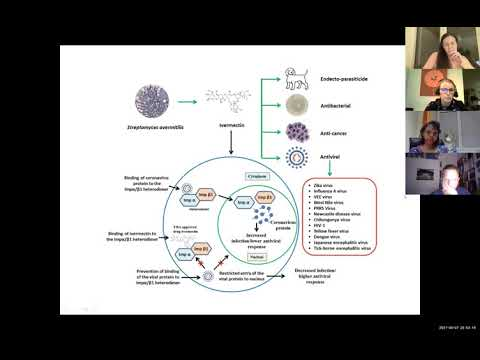 IVERMECTIN als Covid-19 Therapie