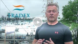3-minute Market Insight - Albacore Tuna Radioactive Contamination Fears, 2013 Pacific Cod Fishery