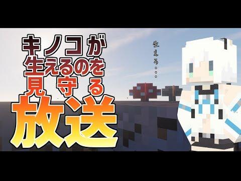 【Minecraft】スカイブロック番外編:きのこを見守る【Skyblock3】