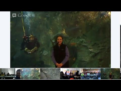 Seattle Aquarium #VirtualFieldTrip