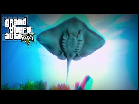 "GTA 5 - TWO Peyote Plant Locations #11, #12 | ""Play as Water Animals"" (12/27 Peyote Plants)"