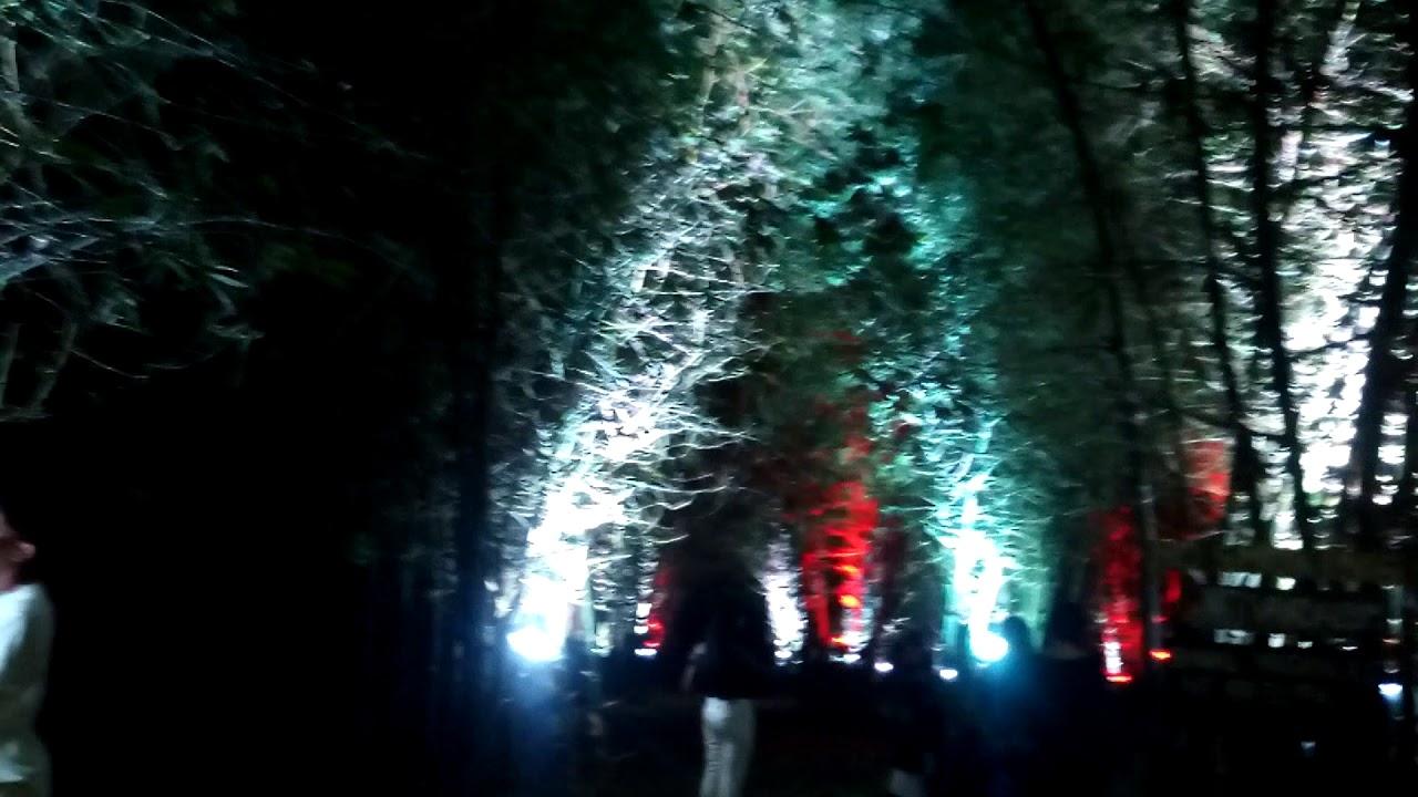 Bamboo Christmas Village