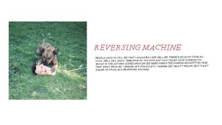 Play Reversing Machine