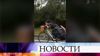 Восторг миллионов пользователей Интернета вызвала испанская велосипедистка, облаченная врясу.