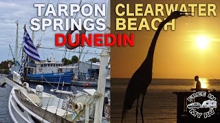 Tarpon Springs, Dunedin, and Clearwater Beach - Traveling Robert thumbnail