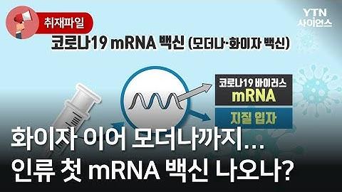 [사이언스 취재파일] 화이자 이어 모더나까지…인류 첫 mRNA 백신 나오나? / YTN 사이언스