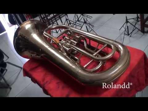 Planchador Magnético ROLANDD para desabollar instrumentos musicales