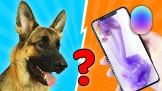 МАРУСЯ от Мэйл Ру ПРОТИВ ЭРИКИ!  Собака делает слайм из случайных ингредиентов