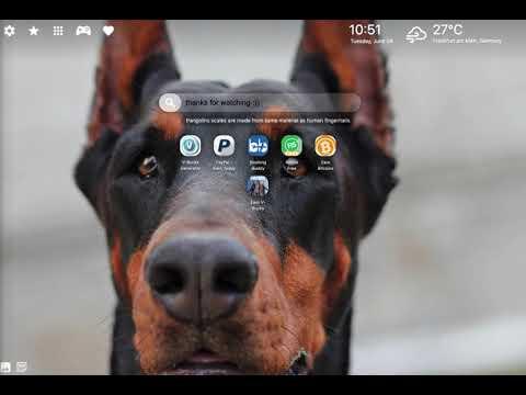 Doberman Wallpaper & Doberman Dog Theme HD